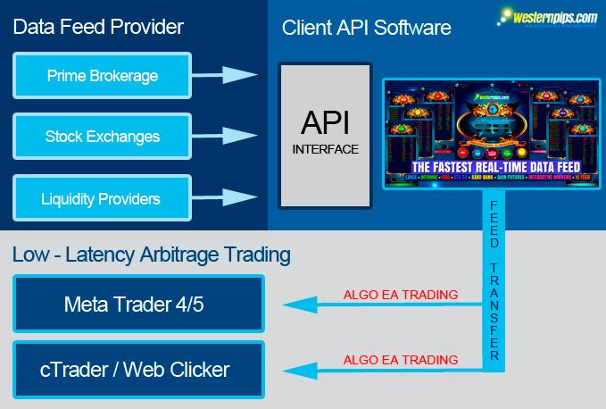 Electronic Trading Protocol | API Forex Platform